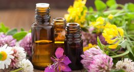 Fall Essentials: Pick the Best Eseential Oil For Your Hair Type