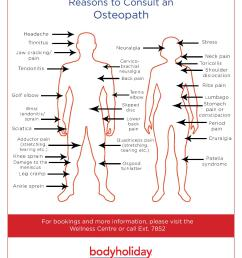 osteopath chart and reasons to visit them at bodyholiday  [ 1275 x 1650 Pixel ]