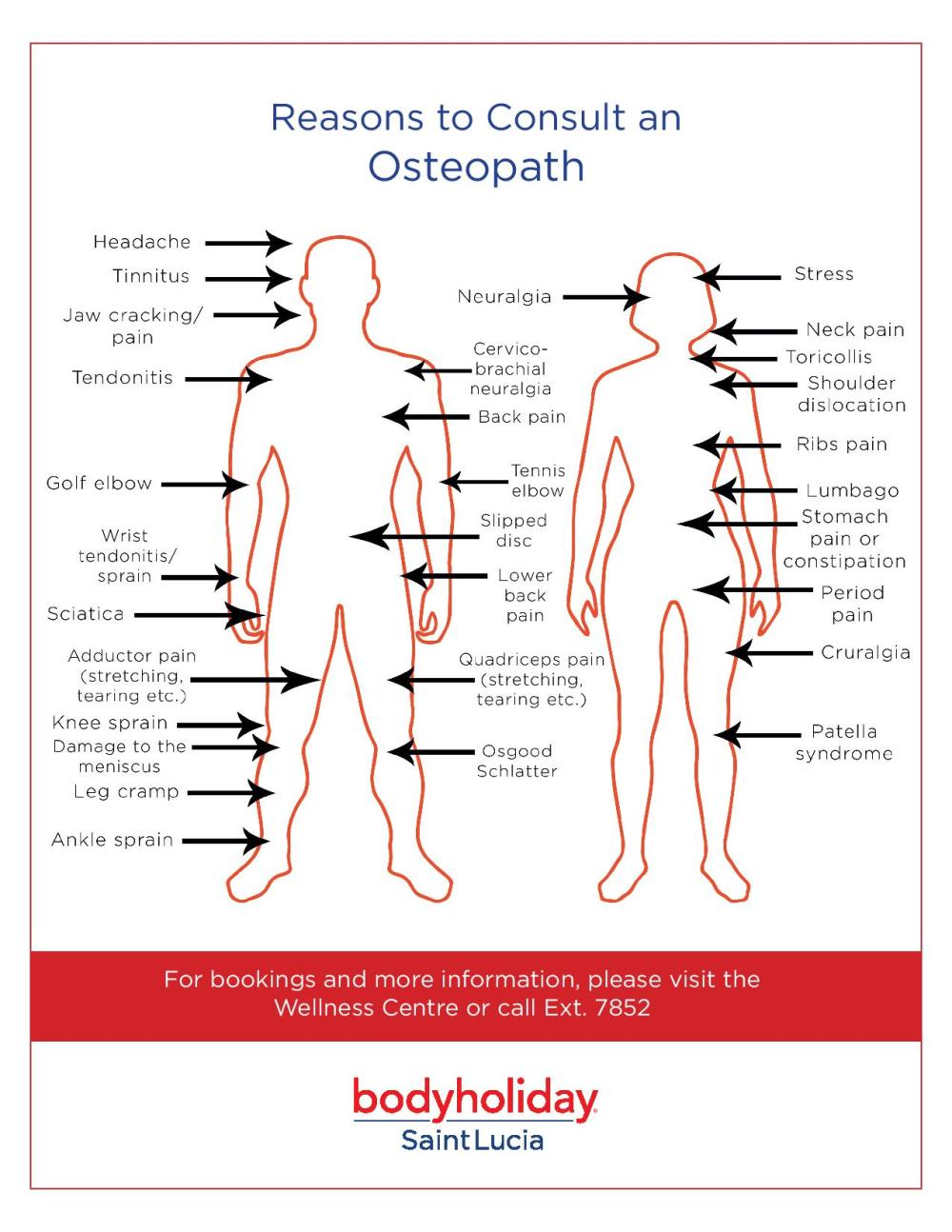medium resolution of osteopath chart and reasons to visit them at bodyholiday