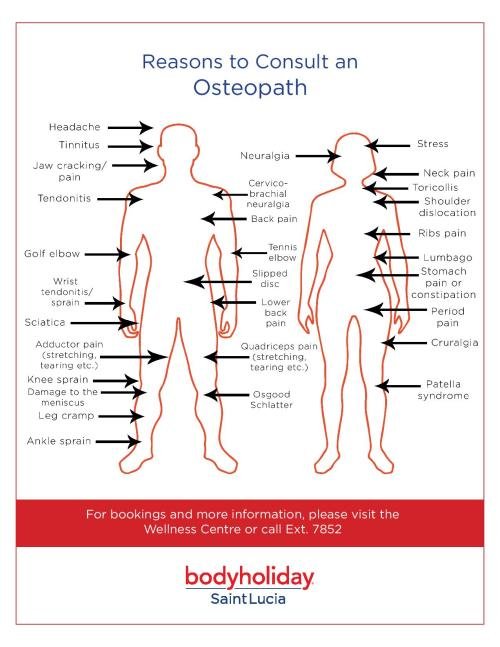 small resolution of osteopath chart and reasons to visit them at bodyholiday