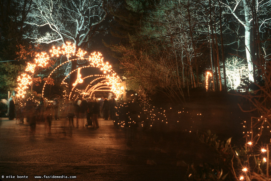 Bronx Zoo Holiday Lights