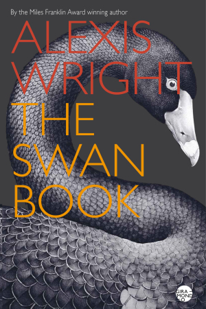 The-Swan-Book-cover