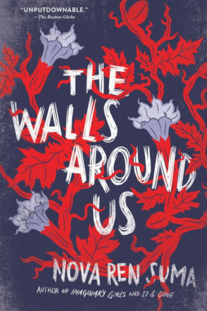 The Walls Around Us (PB)