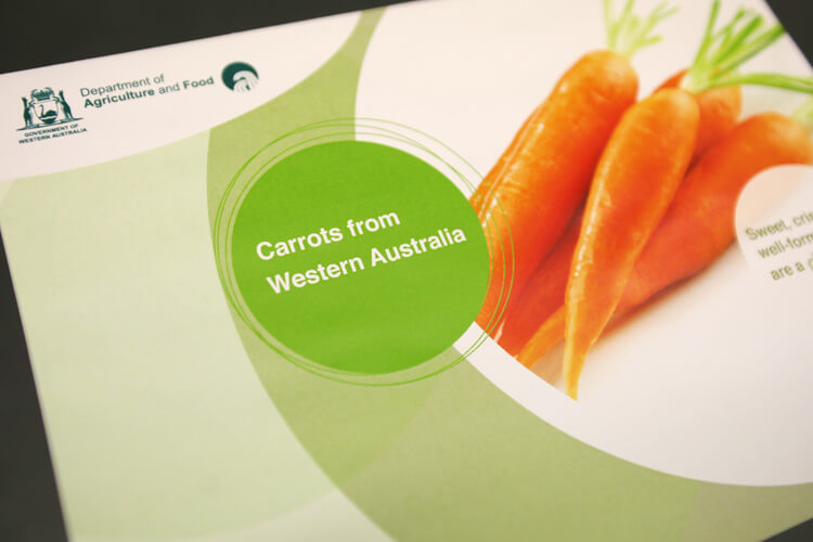 Department of Agriculture Information Pamphlet