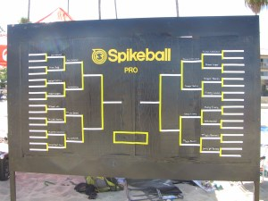 Spikeball Pro Division
