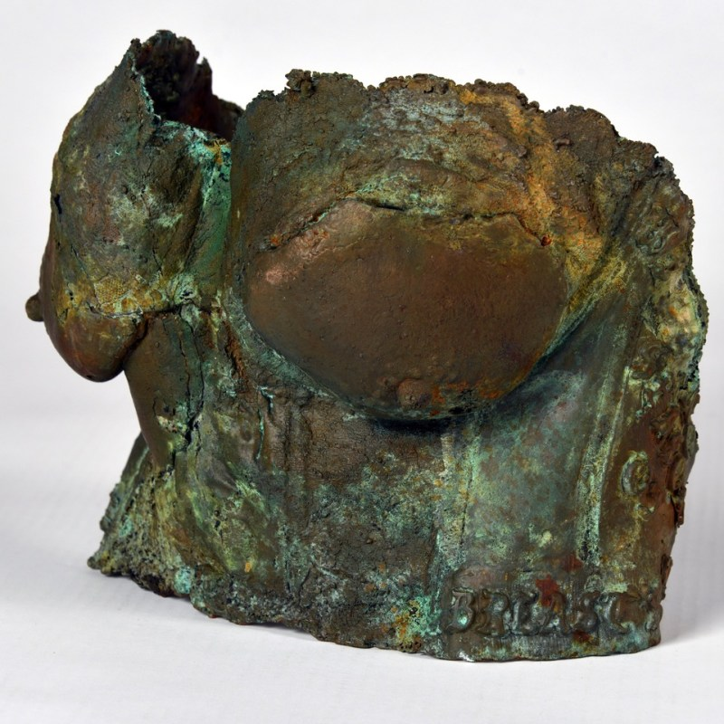Mary Coss Bronze Busts