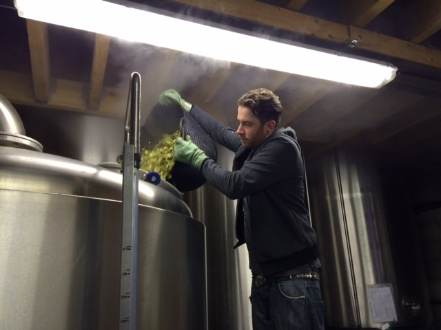 Cascade hop going into Brew Foundation beer