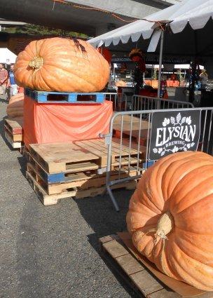 gpbf14-great-pumpkins-2