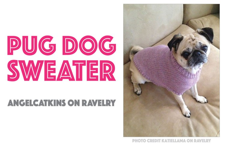 Seven Free Dog Sweater Patterns - The Broke Dog