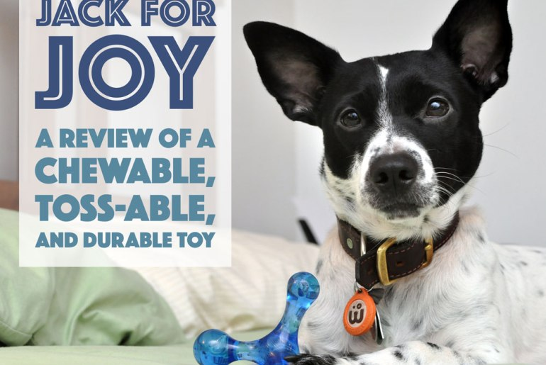 What is chewable, toss-able, durable, and made in the USA? The Jack For Joy! Henry gave this great toy a test run - click to see what he thought!