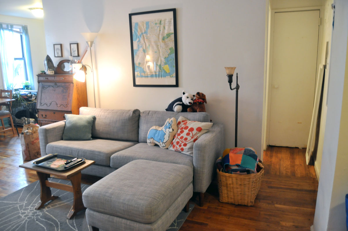 Do You Share A Small Apartment With A Dog? It Doesnu0027t Have To
