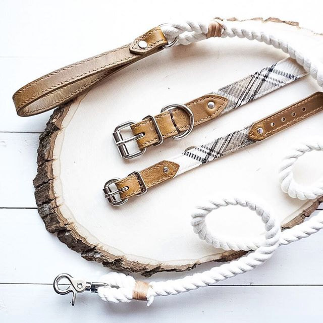 Bearytail Leather Co. makes beautiful matching dog collars and bracelets to show the world how much you love your pup! Tale 20% off with code THEBROKEDOG!