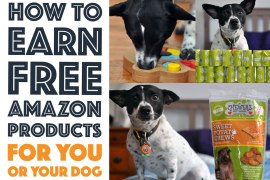 How to Earn Free Amazon Products For You or Your Dog