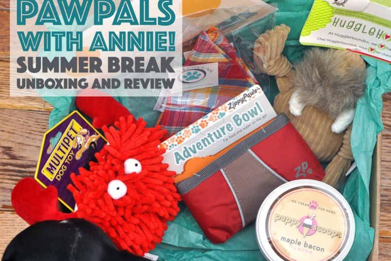 School's out for the summer! The new PawPals With Annie! June box seeks to make the next few months' adventures extra fun. Check it out!