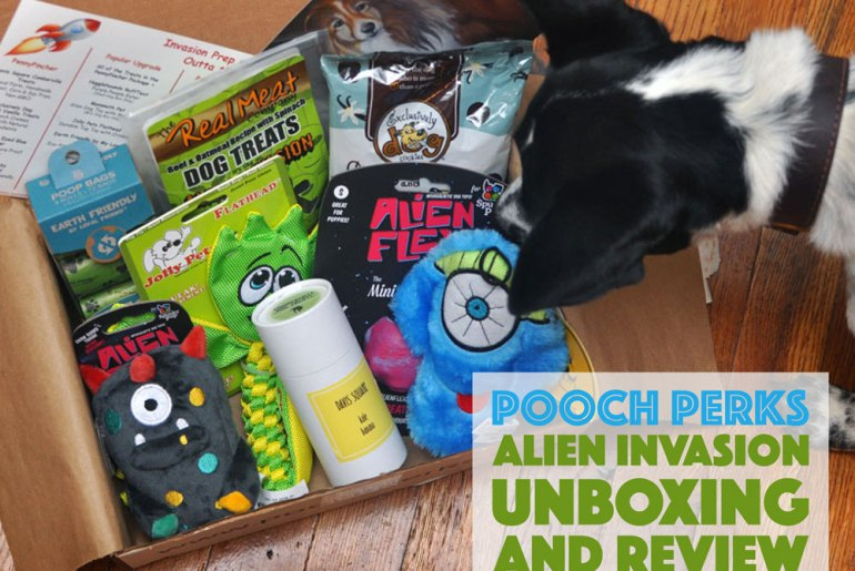 What's that unidentified object flying in the sky? Is it a plane? A rogue dog turd? No it's just this month's Pooch Perks Alien Invasion box! Check out this month's Pooch Perks Unboxing and score an exclusive discount!