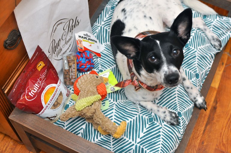 """It's back! You may remember our PawPals With Annie! reviews from May and June and are wondering what's in the newest boxes. Keep reading to see what we received in this November's """"Pup Pie"""" shipment and learn how to save 10% on your own subscription!"""