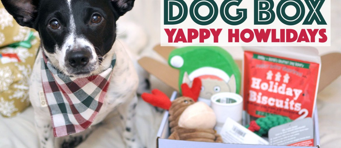 Yappy Howlidays! From The Dapper Dog Box