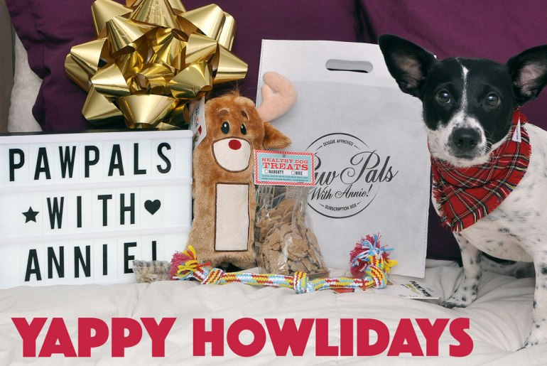 Are you feeling jolly this holiday season? You will be after opening PawPals With Annie!'s Yappy Howlidays shipment! Each month's eco-friendly bag is filled with about five quality themed goodies for your pup, and December's bag is no exception.