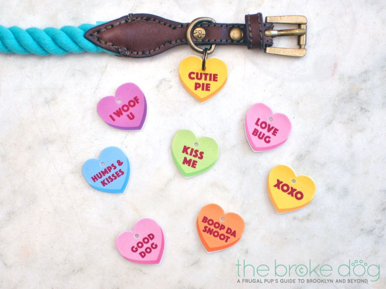 It's almost Valentine's Day, and we all know where your love REALLY lies! With only a few materials, you can make your pup a token of your affection that will also look adorable on his or her collar. Check out these easy Free Printable Conversation Heart Collar Charms for the perfect gift!