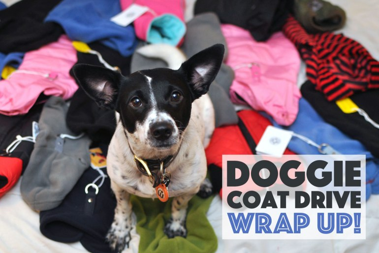 This past November, we launched the 2016 Doggie Coat Drive to benefit a couple of our favorite rescues. We were overwhelmed with the incredible response from both brands and individuals. We ended up donating over 200 coats, plus toys, treats, and food. Keep reading for details!