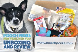 "Pooch Perks' ""New Year, New You"" box is packed with healthy treats, toys that promote fun and exercise, and shampoo to help your pup look awesome!"