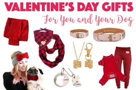 When searching for the perfect Valentine's Day gift for my dog, I found these great matching sets that I know my fellow Crazy Dog Ladies will love — many from Etsy shops and artisans. Check out our gift guide full of Valentine's Day gifts for dogs!