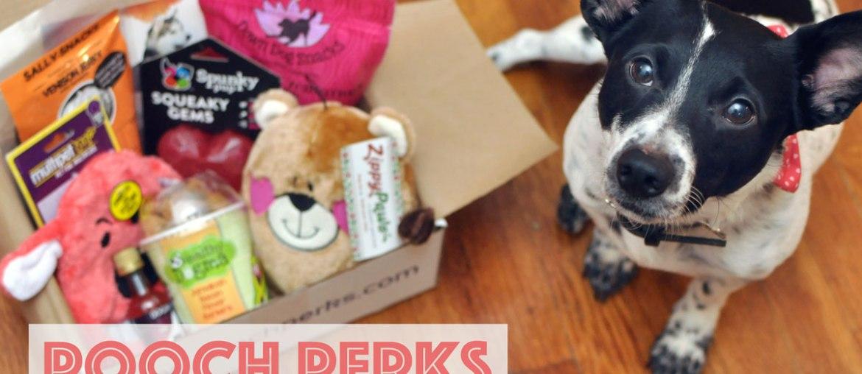 Pooch Perks Fifty Shades of Ruff Box + Pooch Perks Discount!
