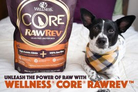 Have you heard the buzz about raw feeding for dogs but aren't sure where to start? Wish you could give it a try without the mess, fuss, or confusion? Wellness® CORE® RawRev™ is here to he