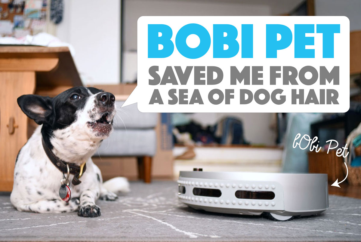 Bobi Pet Saved Me From A Sea Of Dog Hair The Broke Dog