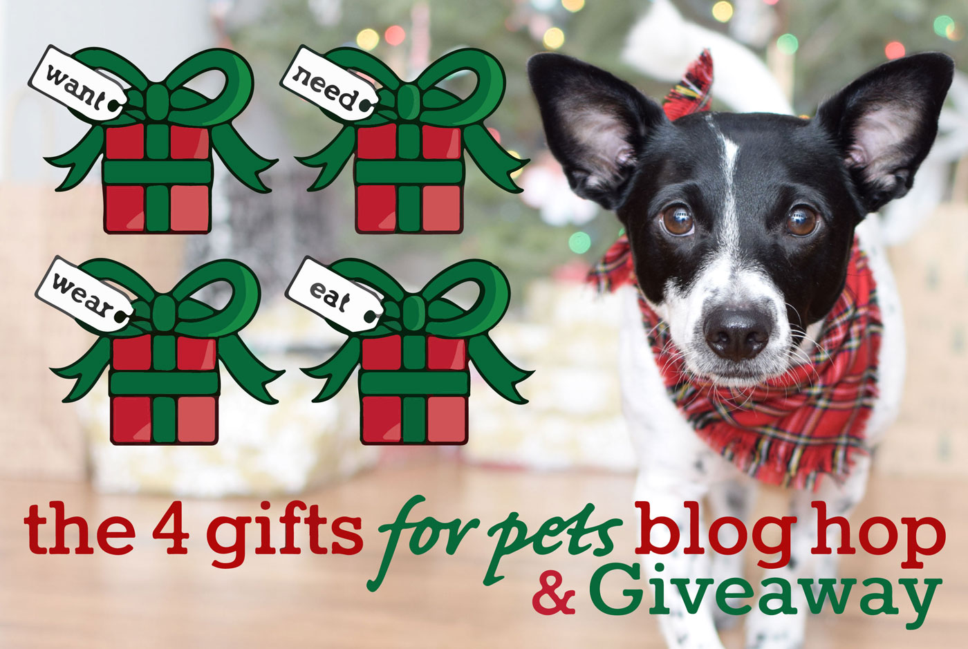 4 gifts for pets giveaway dog rescue edition the broke dog