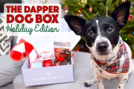 It's the holiday season, and we all haveshopping to do. Make it easier for yourself by purchasing The Dapper Dog Box holiday edition for furry friends on your list!