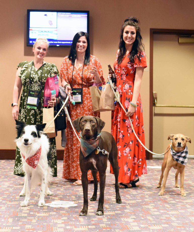 "Have you ever been curious about what happens a pet blogging conference? Here is a list of what I'm calling ""The Four S's"" of attending the BlogPaws conference: Sponsors, Sessions, Swag, and Socialization."