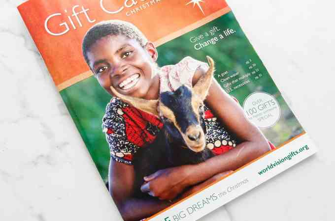 World Vision Review and Giveaway