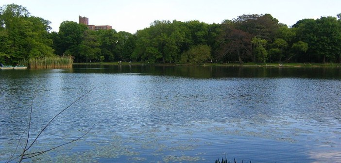 The Prospect Park Lake – Brooklyn's Only Lake