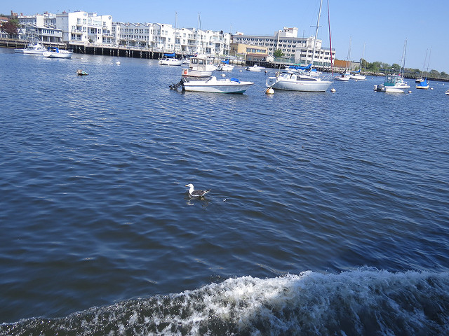 sheepshead-bay-waterfront