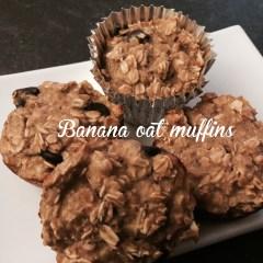 Gluten Free Banana Oat Protein Muffins