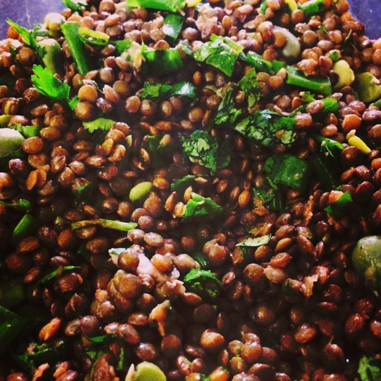 Lentil Fava Bean Salad