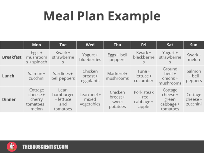 meal plan example