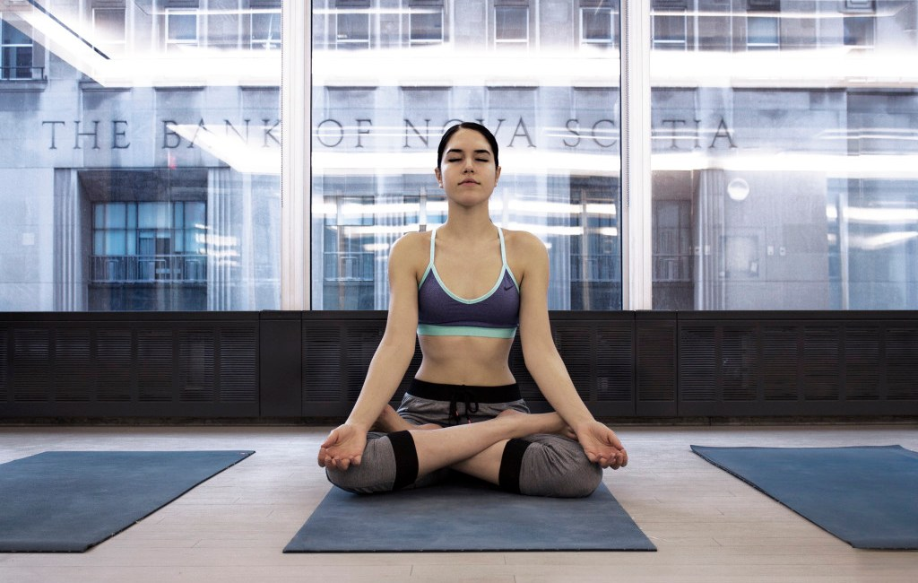 rp_equinox-yoga-vanessa-cesario-lotus-1024x785.jpg