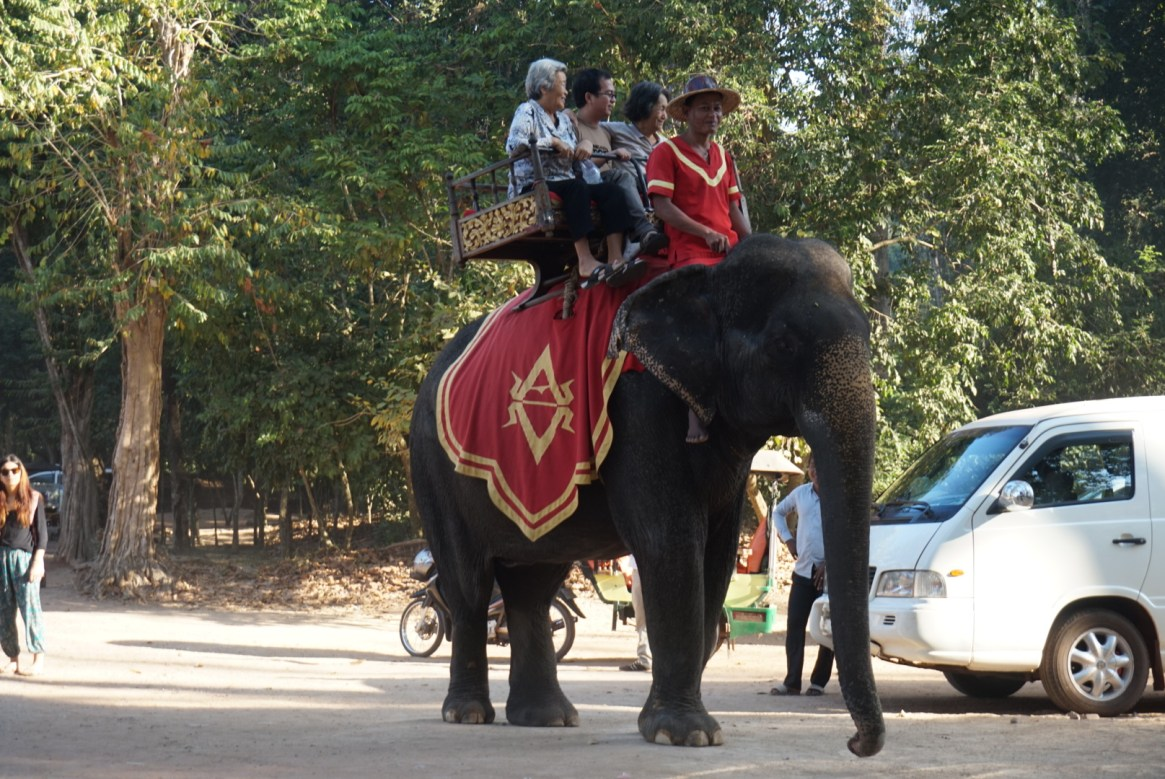 Elephant Ride in Siem Reap