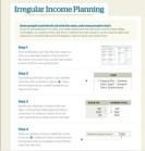 Irregular Income Planning
