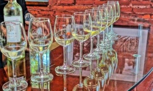 Best Chilean Wine Tours on a Budget   For Wine Lovers