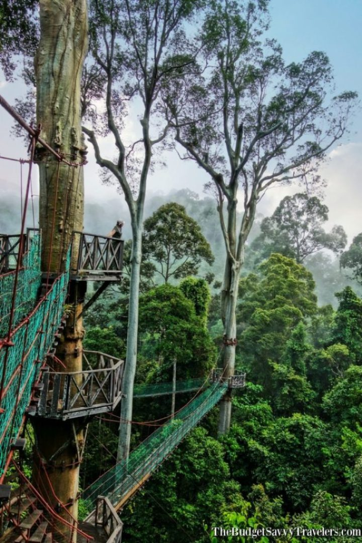 One of our favorite viewpoints in Asia! This is the picture of the canopy tour that I saw in a magazine and was able to recreate.