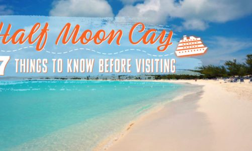 7 Things to Know Before Visiting Half Moon Cay | Is It Worth the Money?