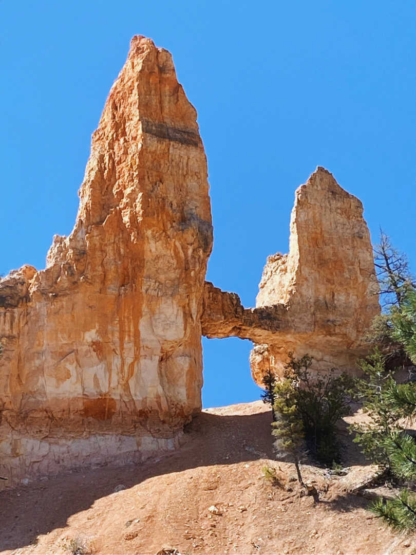 Best Bryce Canyon Hiking Trails Hidden Tropic Trail Is A Must Do
