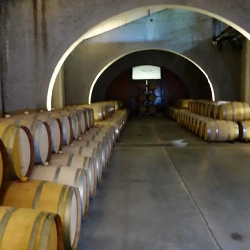 NQN Wine Cellar Patagonia