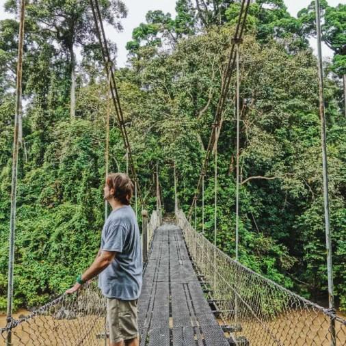 rope bridge Borneo Rainforest Lodge