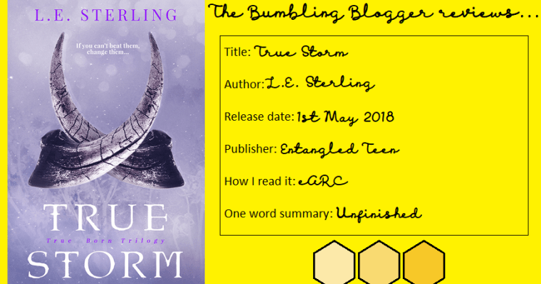 Review: True Storm by L.E. Sterling