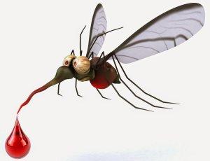 the-bum-gun-mosquito-prevention