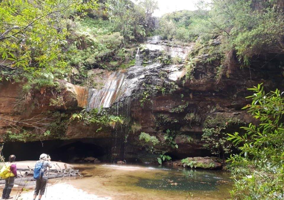 Faulconbridge to Springwood via Numantia Falls